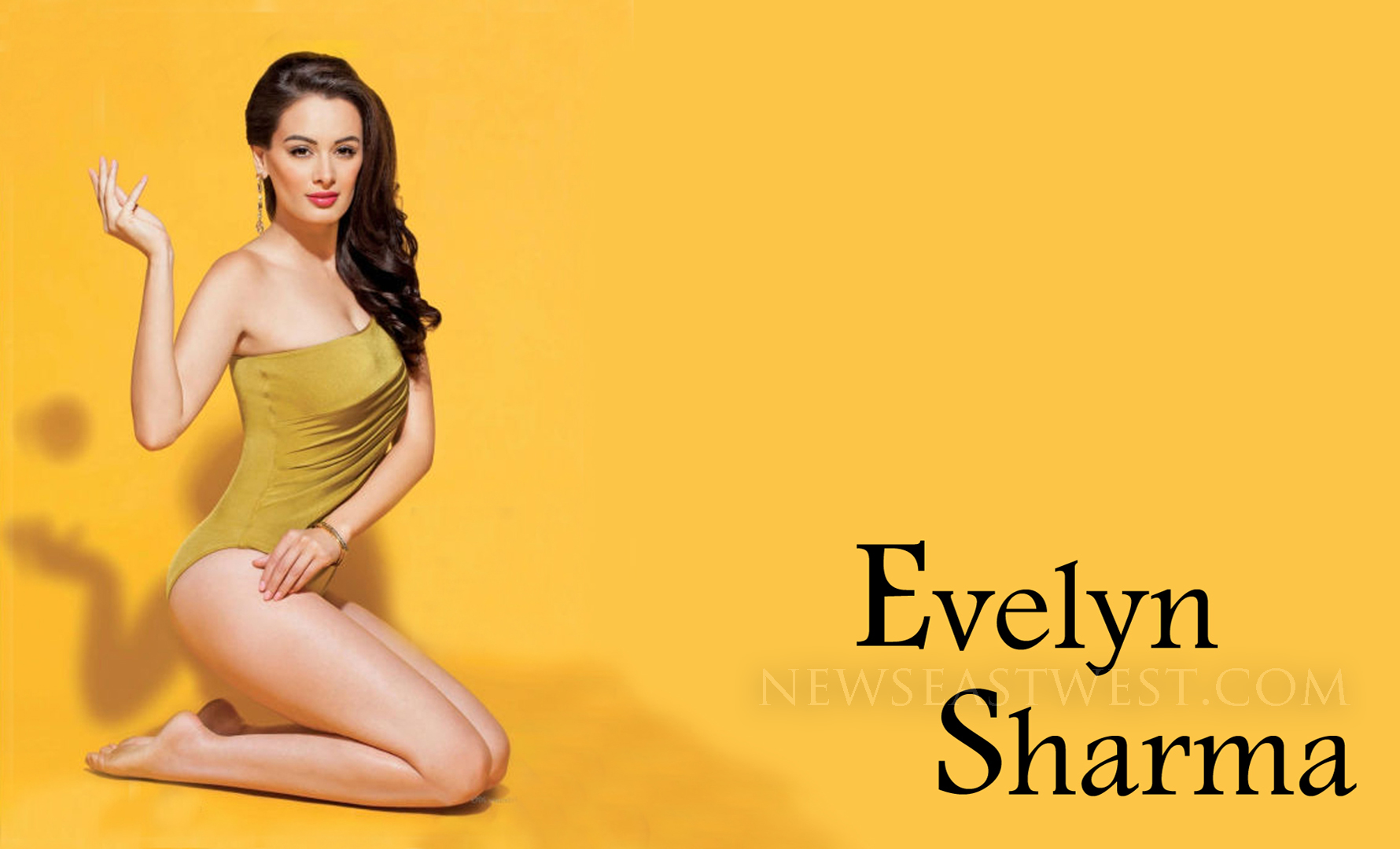 evelyn-sharma hot pic