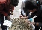janpath-market2