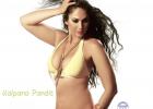 kalpana-pandit-sexy-image