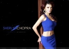 sherlyn-chopra-wallpaper
