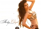 sherlyn-chopra-wallpaper4