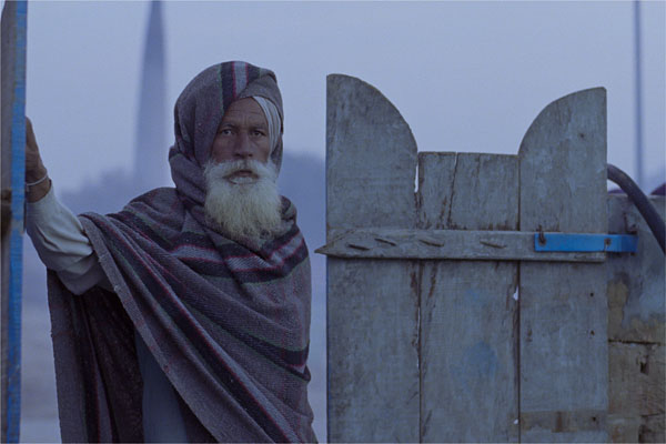 Why Punjabi film Anhey Ghorhey Da Daan is a winner