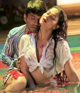 Veena Malik seen in a Kannada film