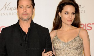 Brad Pitt and Angelina Jolie in good times.