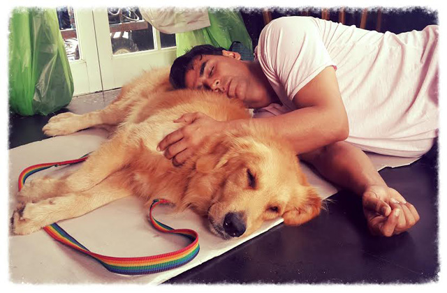 Dog gets higher billing than Akshay Kumar!