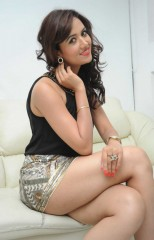 South Indian actress Preeti Rana