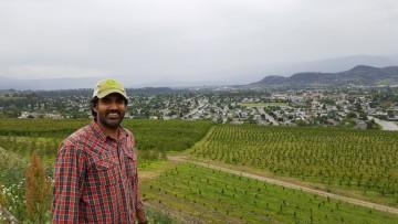 Cherry farmer Sukhpaul Bal of Kelowna in British Columbia