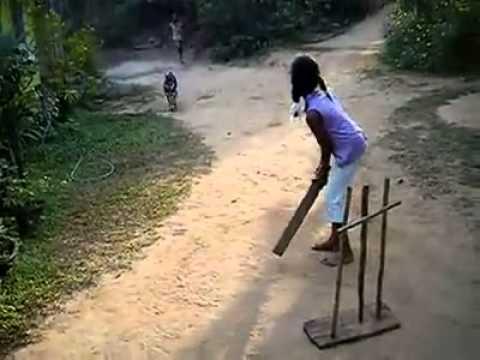 Dog wicket-keeper